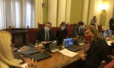 Учешће Ивице Дачића на Парламентарној скупштини Савета Европе